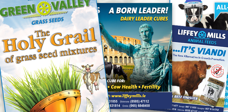 Liffey Mills Advert Website